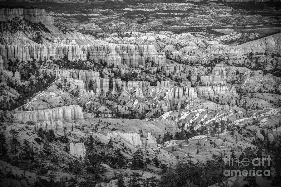 The Vastitude Of Bryce Photograph