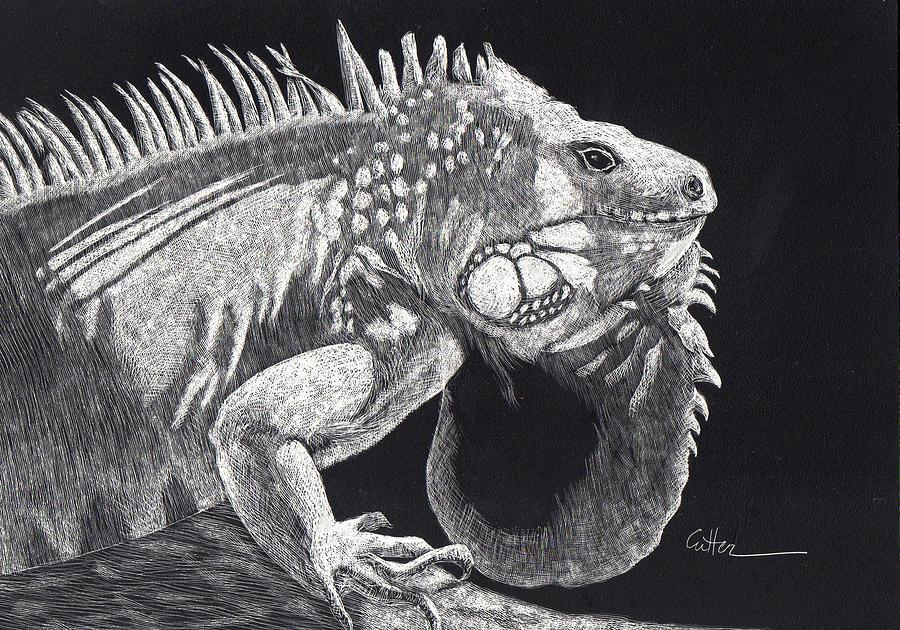 Iguana Painting - The Veteran by Diane Cutter