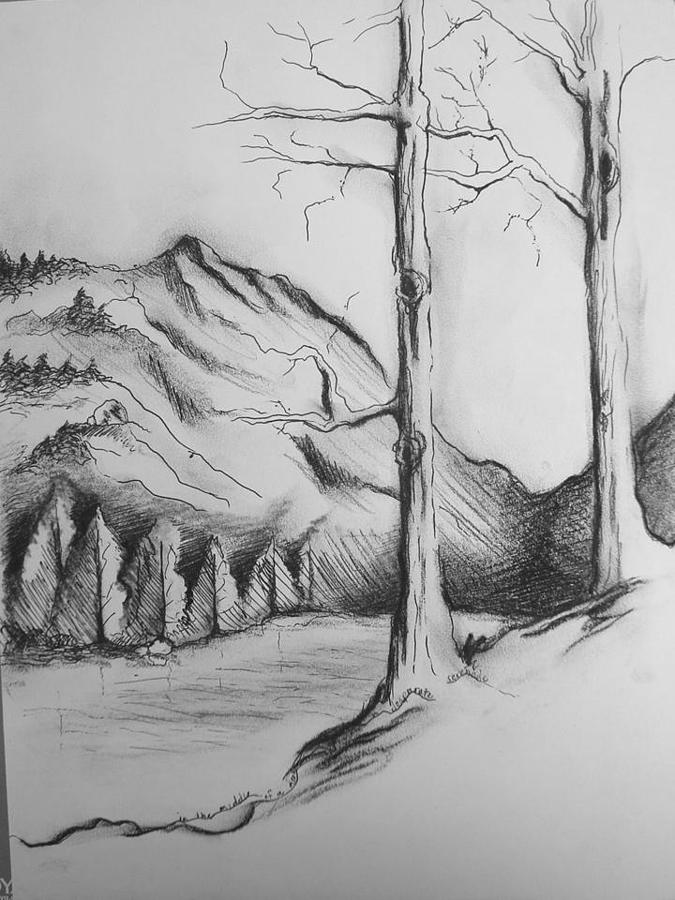 Landscape Drawing - The View by Candice DeKay