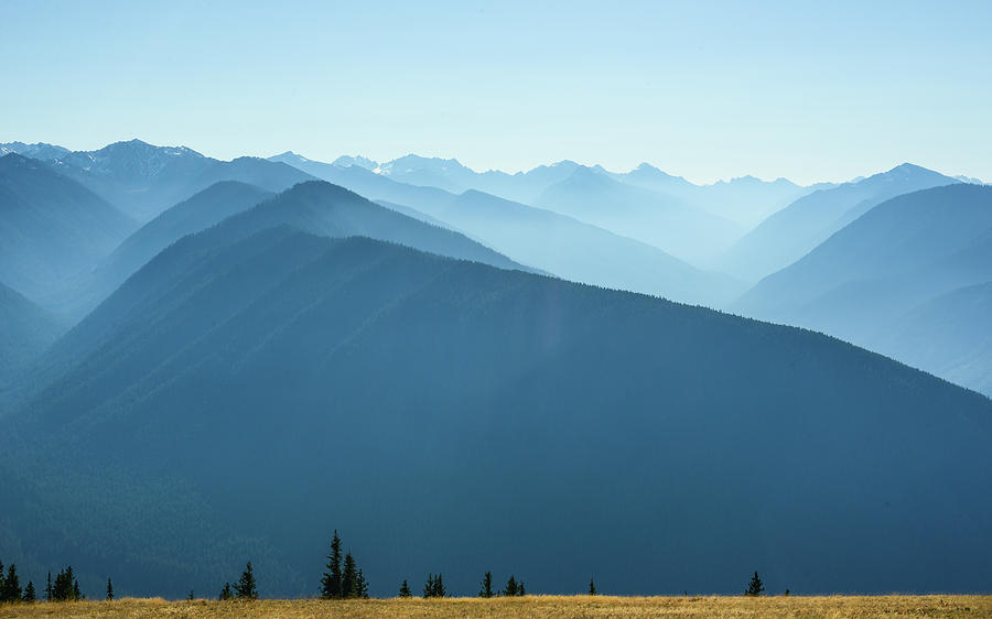 The View From Hurricane Ridge by Ronda Broatch
