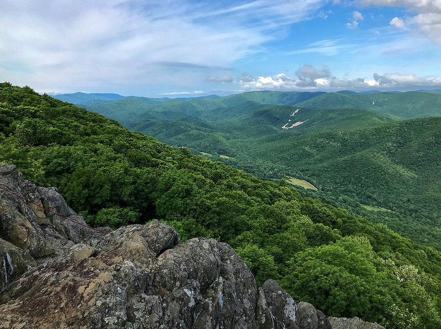 The View from Raven's Roost by Lori Coleman