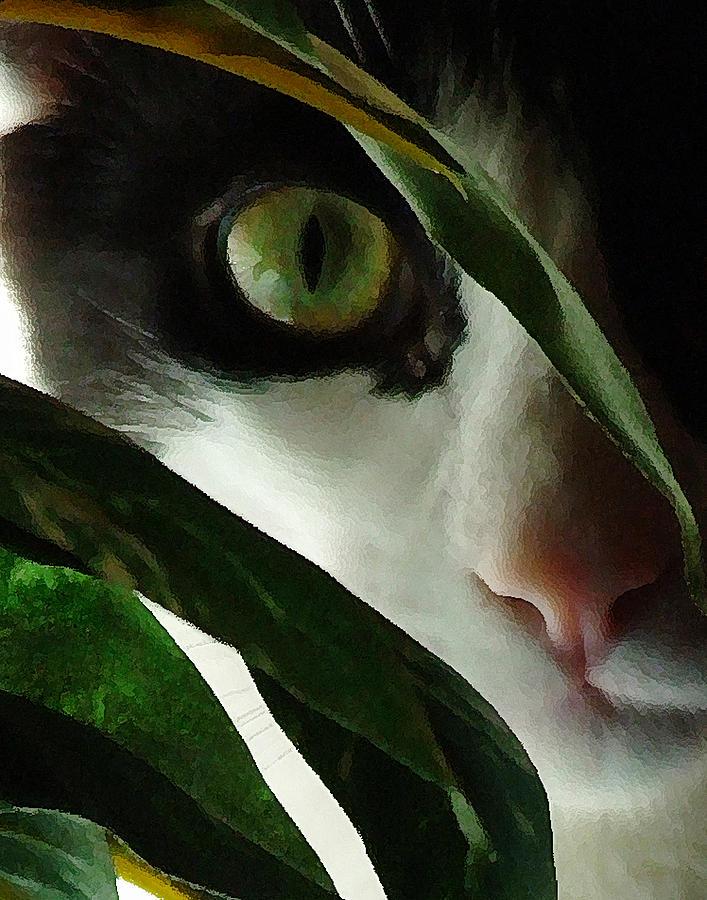 Cat Photograph - The  Voyeur by Lynn Andrews