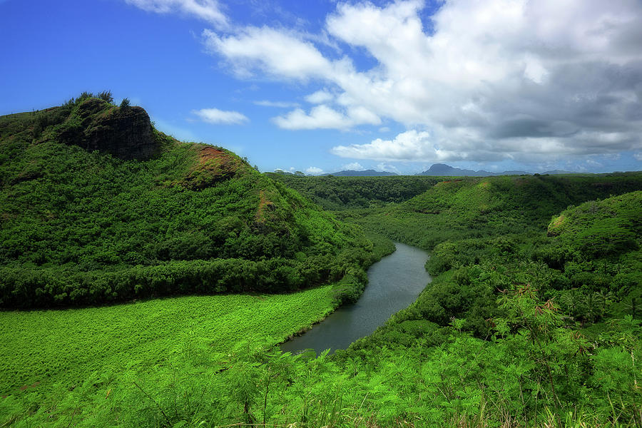 The Wailua River by Eric Wiles