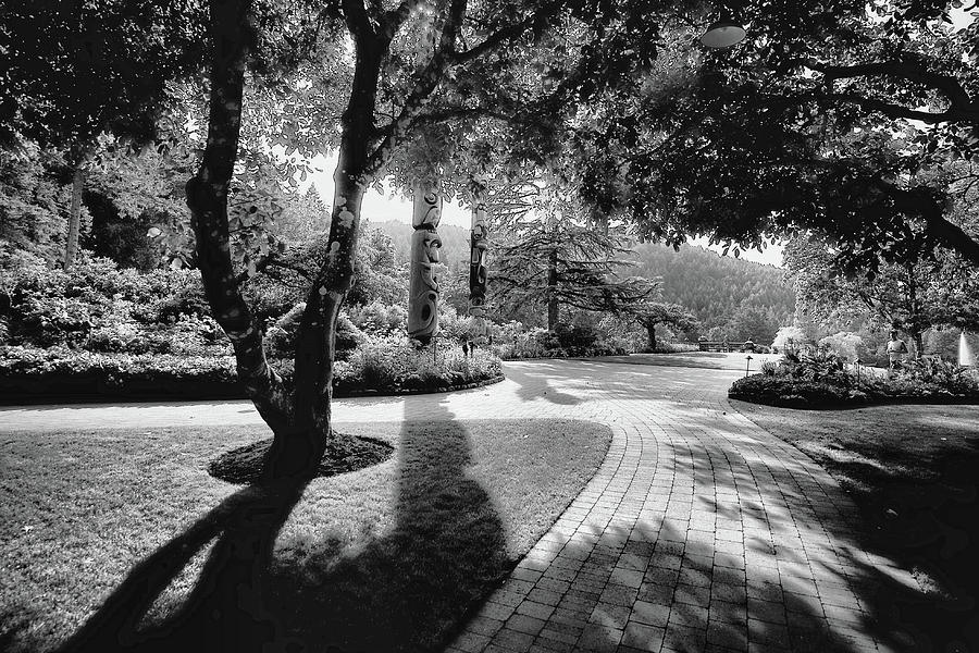 Butchart Photograph - The Walkway Bw by Lawrence Christopher