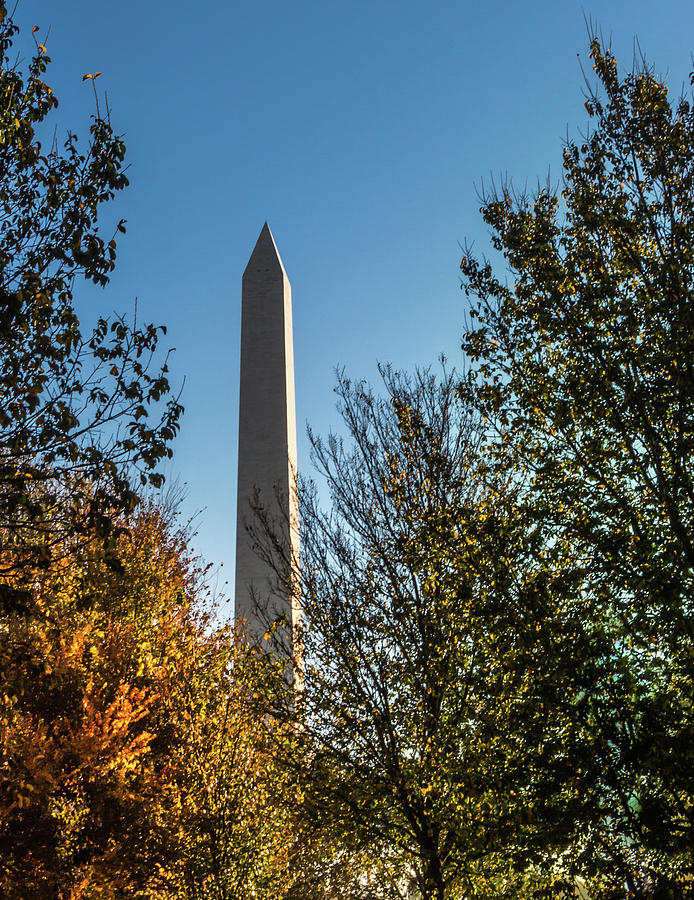 The Washington Monument in Fall by Ed Clark