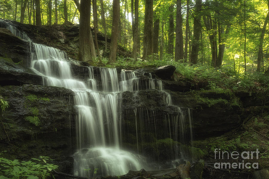 Nature Landscape Photograph - The Waterfall In The Forest by Mary Lou Chmura