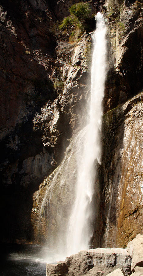Water Photograph - The Waterfall by Winona Steunenberg