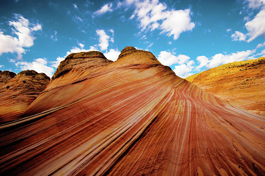 The Wave Photograph - The Wave Arizona rocks by Norman Hall