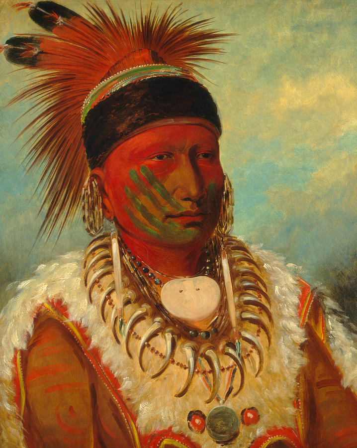George Catlin Painting - The White Cloud, Head Chief of the Iowas by George Catlin