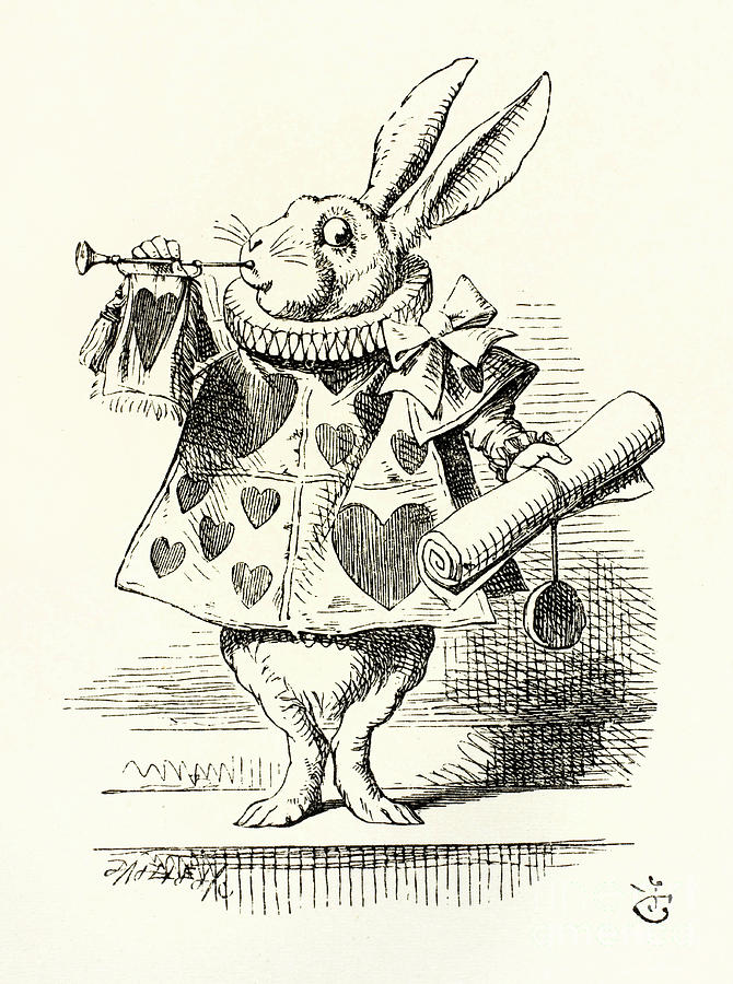 The White Rabbit From Alice In Wonderland Drawing By Mary Evans Picture Library