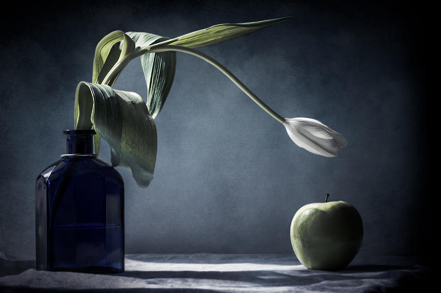 The White Tulip and the Green Apple  by Maggie Terlecki