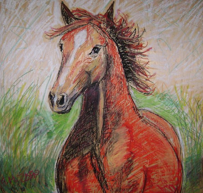 The Wild Horse Painting by Gianantonio Zago Marino
