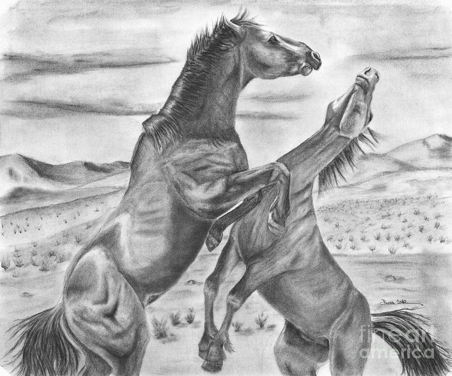The Wild West Mustangs Drawing by Russ Smith