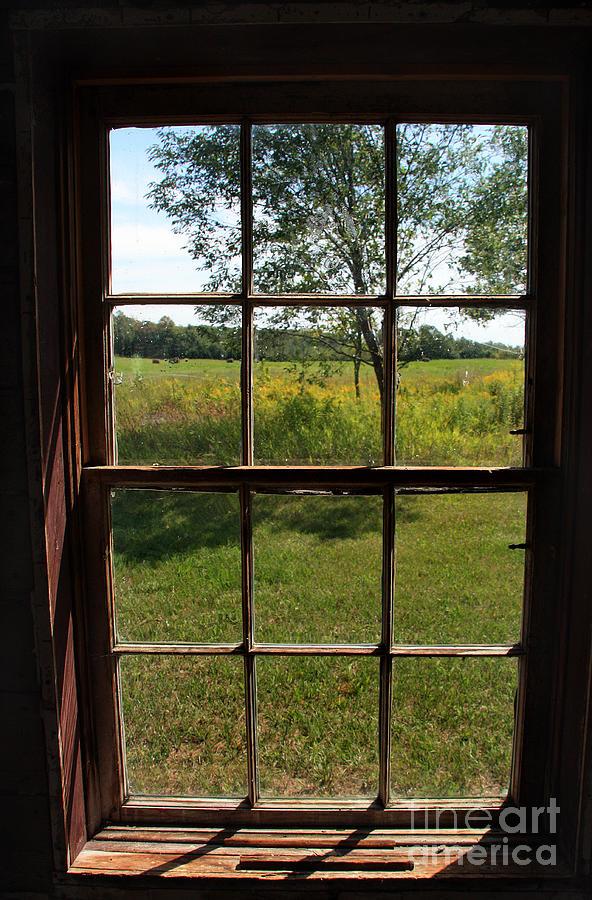 The Window 2 by Joanne Coyle