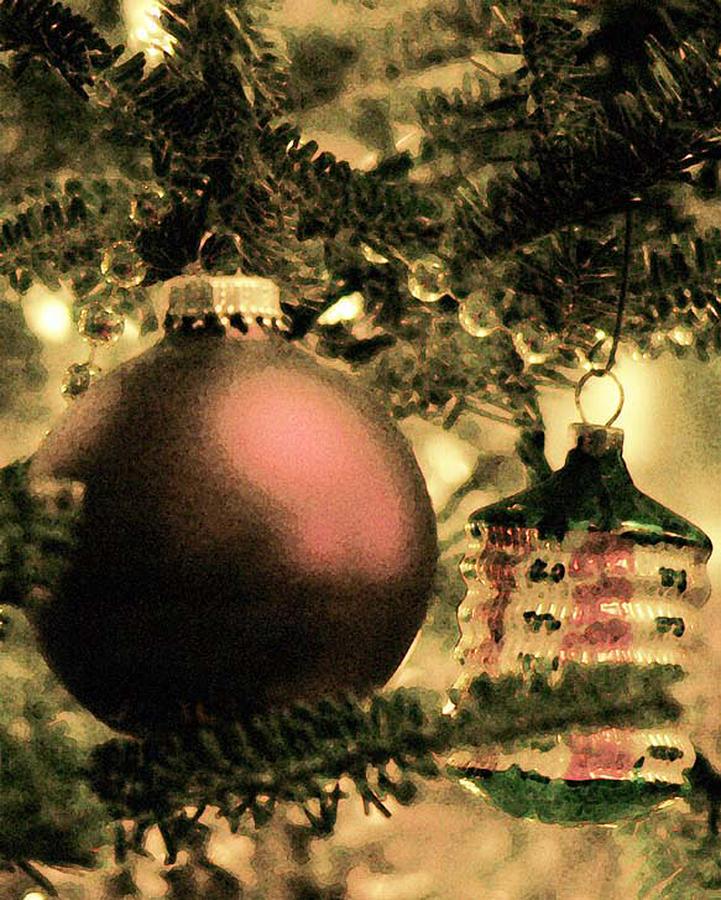 Xmas Photograph - The Winter Holiday. by Robert Ponzoni