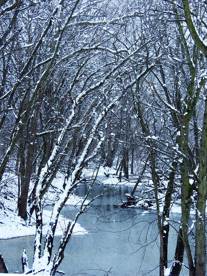 Stream Photograph - The Winter Stream  by Lori Frisch