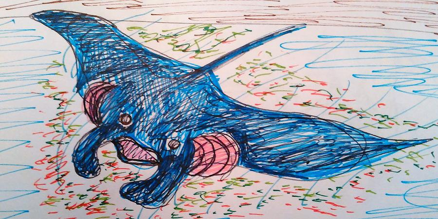 Manta Ray Drawing - The Wise Manta by Andrew Blitman