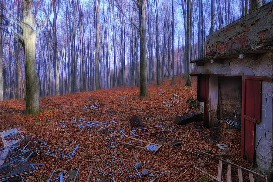 Bosco Photograph - The Wood A La Magritte - Il Bosco A La Magritte by Enrico Pelos