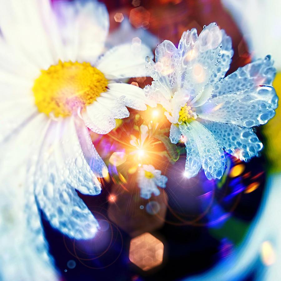 Flowers Digital Art - The World Of Dancing Flowers by Mikko Tyllinen