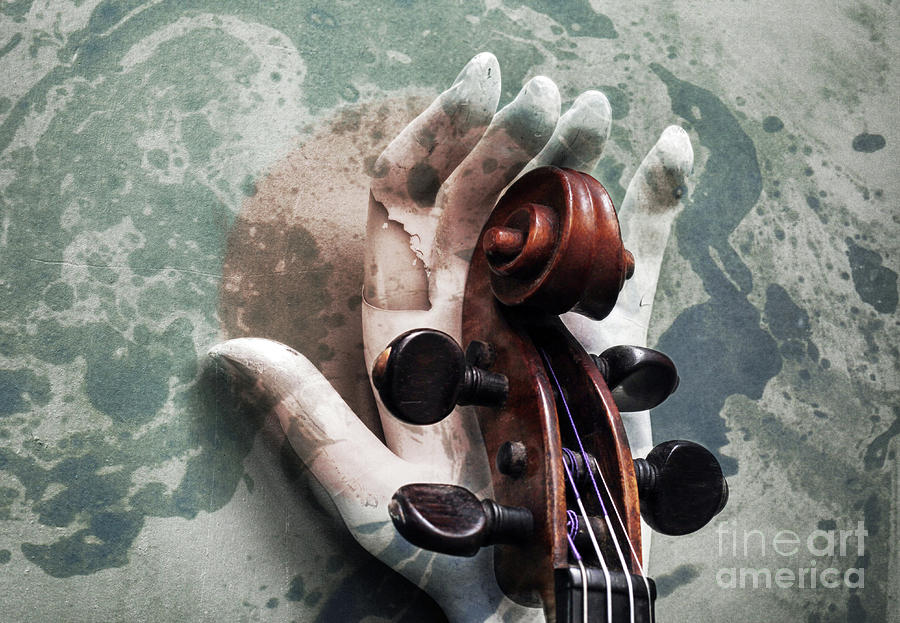 Violin Photograph - The World of Sound  by Steven Digman
