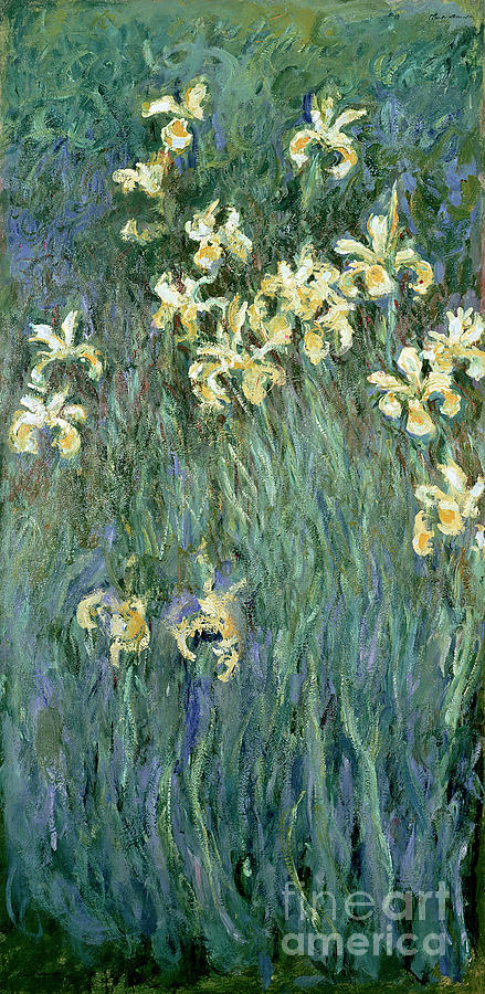 The Painting - The Yellow Irises by Claude Monet
