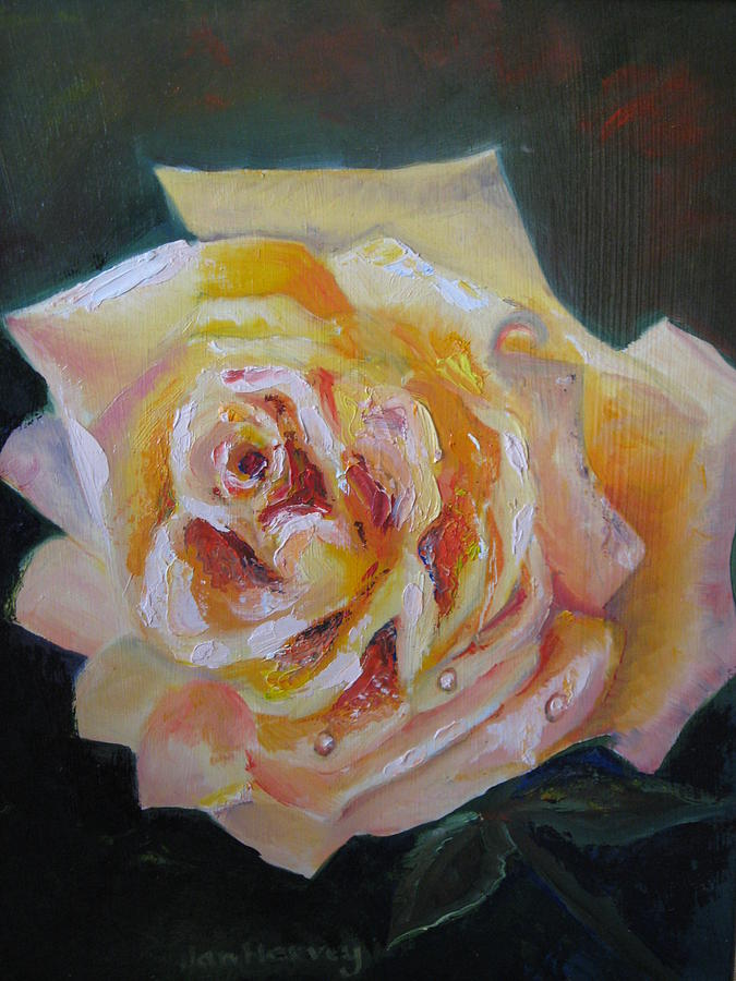 Yellow Rose Painting - The Yellow Rose by Jan Harvey