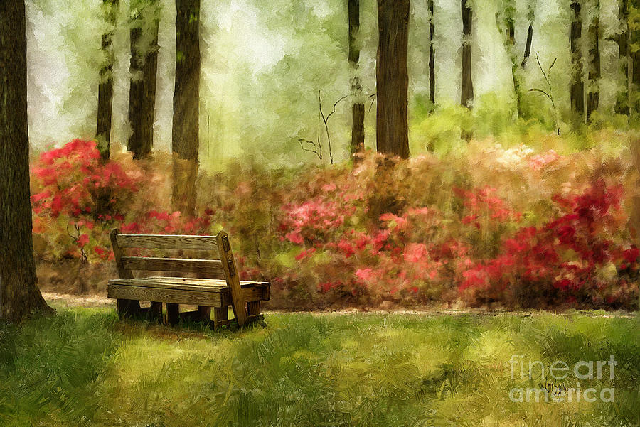 Bench Digital Art - The You You Used To Be by Lois Bryan
