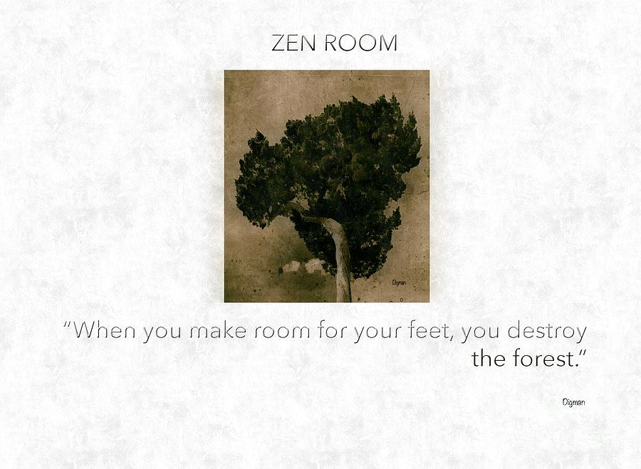 Buddhism Photograph - The Zen Room   by Steven Digman