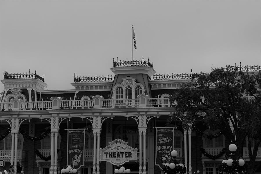 Theater by WhiteoakorganicsLLC Gallery