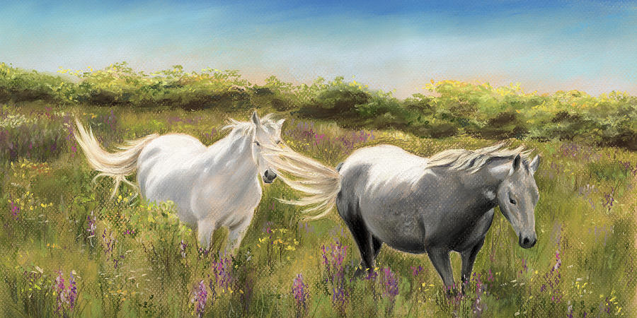 Pony Painting - Thelma And Louise Connemara Ponies by Vanda Luddy