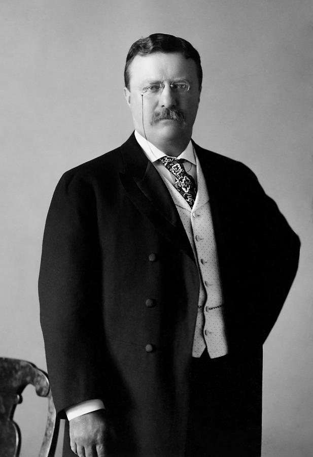 President Roosevelt Photograph - Theodore Roosevelt - 26th President Of United States Of America by War Is Hell Store