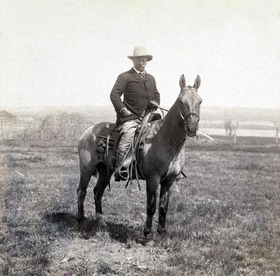 theodore roosevelt horseback   c 1903 photograph by