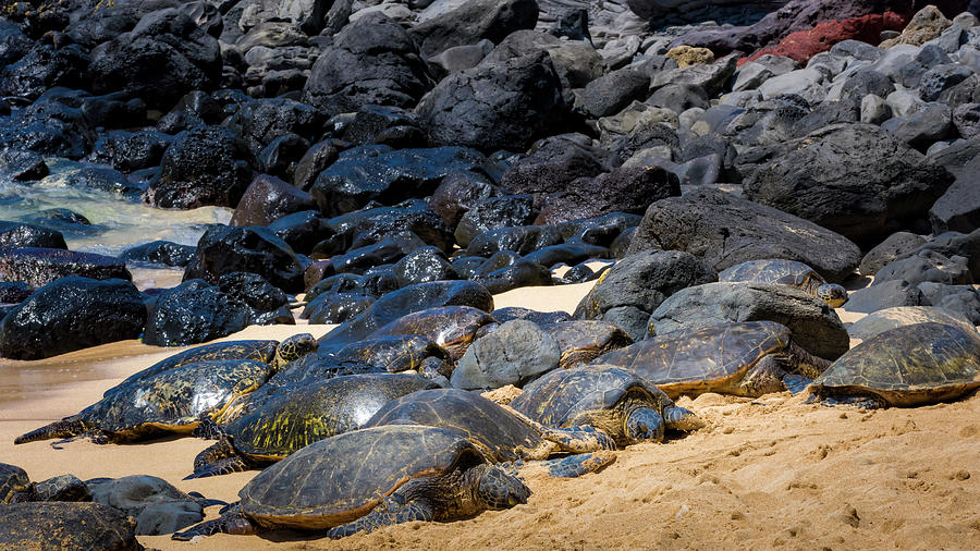 Hawaii Photograph - There Has Got To Be More Room On This Beach  by Jim Thompson