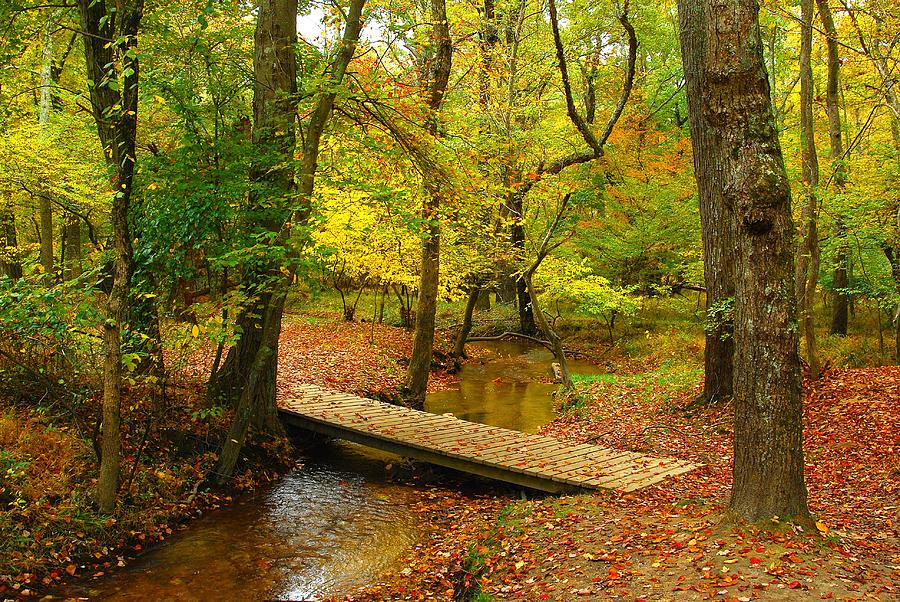 Autumn Landscapes Photograph - There Is Peace - Allaire State Park by Angie Tirado