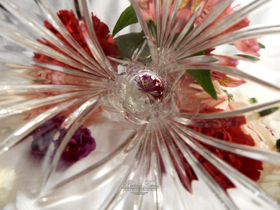 Creative Energy Photograph - Think Outside the Vase #8801_0 by Barbara Tristan