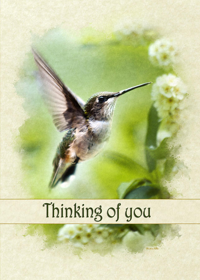 Thinking of you peaceful love hummingbird greeting card mixed media thinking of you mixed media thinking of you peaceful love hummingbird greeting card by christina m4hsunfo