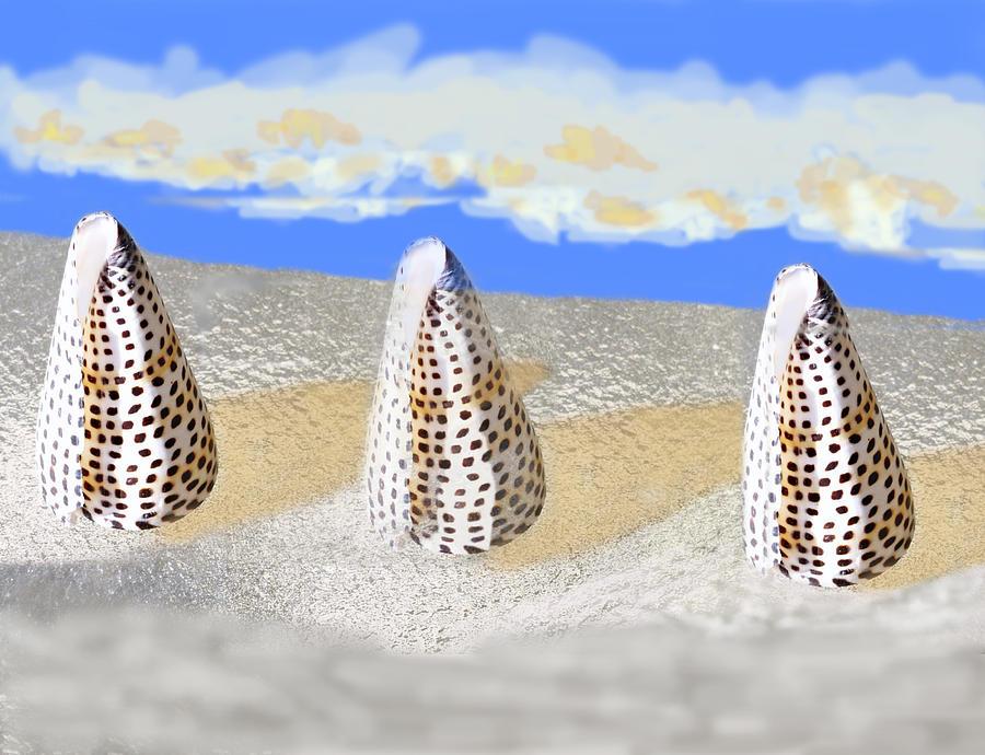 Seashell Digital Art - Thinking Outside The Shell 392 by Roy Azarnoff