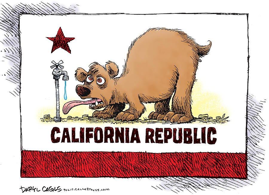 Thirsty California Flag Drawing By Daryl Cagle