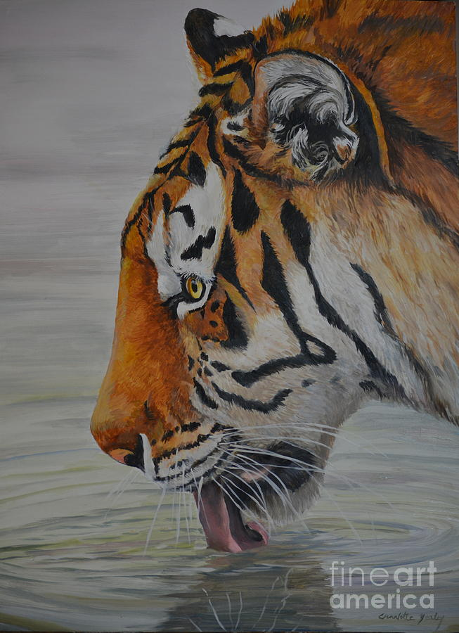 Tiger Painting - Thirsty by Charlotte Yealey