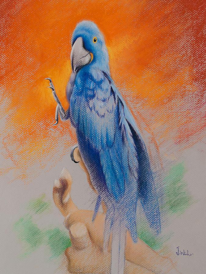 This Bird Had Flown by Joe Winkler
