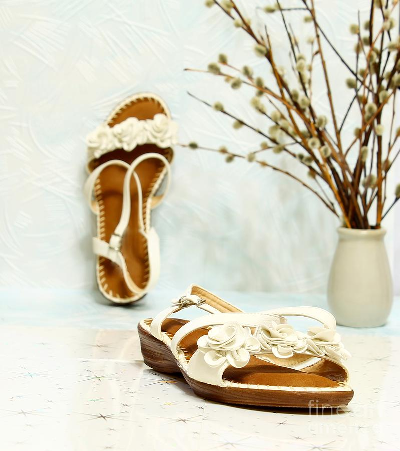 This Is A Female Summer White Shoes Without Heels. In The Background Are Sprigs Of Willow. Photograph