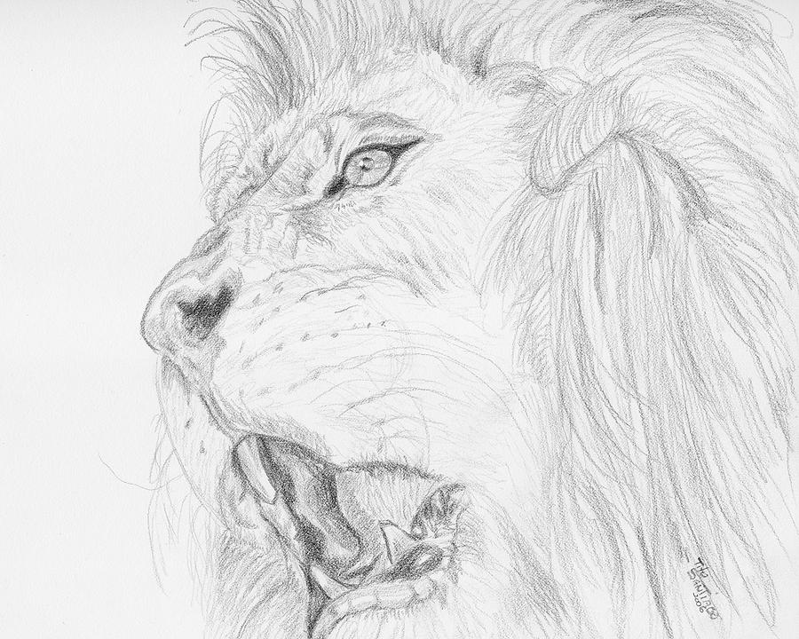 Animals Drawing - This Is A Warning by Tito Santiago