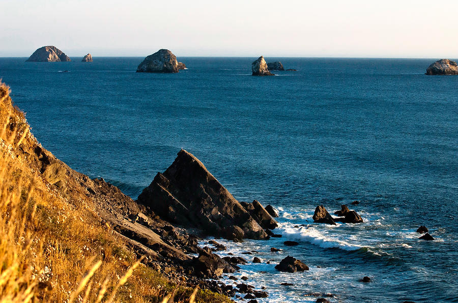 Oregon State Photograph - This Is Oregon State 1 - The Oregon Coast by Paul W Sharpe Aka Wizard of Wonders