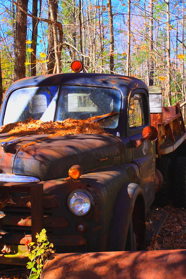 Truck Photograph - This Old Truck by Tom Johnson