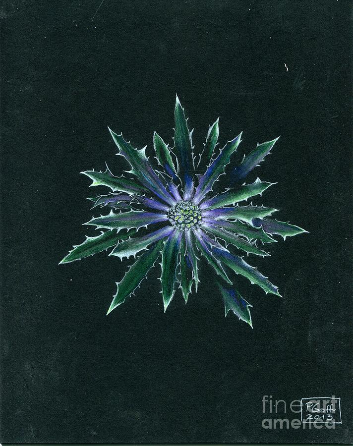 Thistle by Penrith Goff