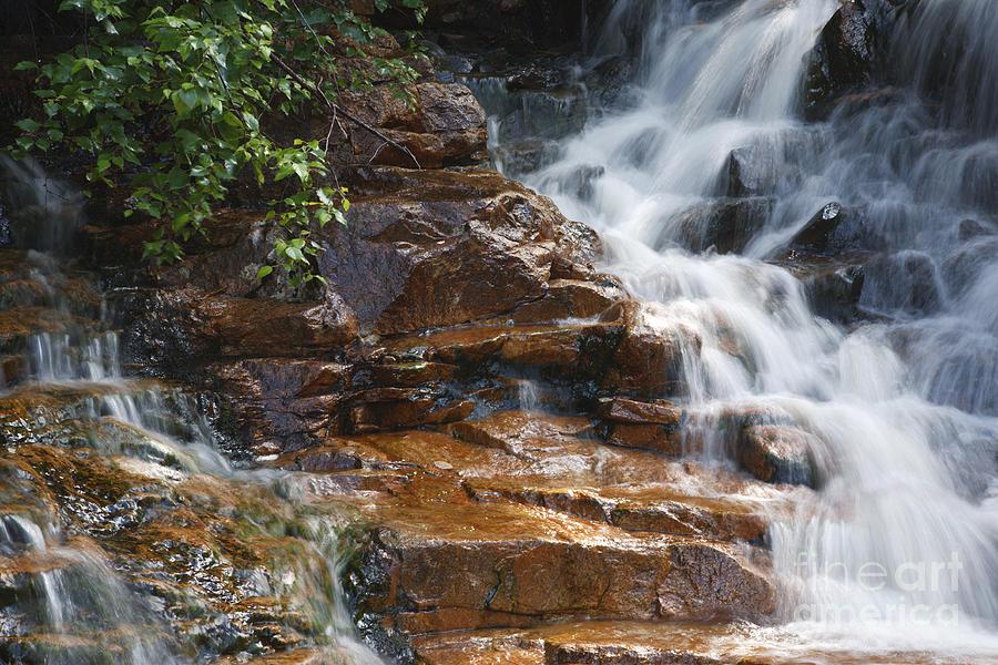 White Mountain National Forest Photograph - Thoreau Falls - White Mountains New Hampshire  by Erin Paul Donovan