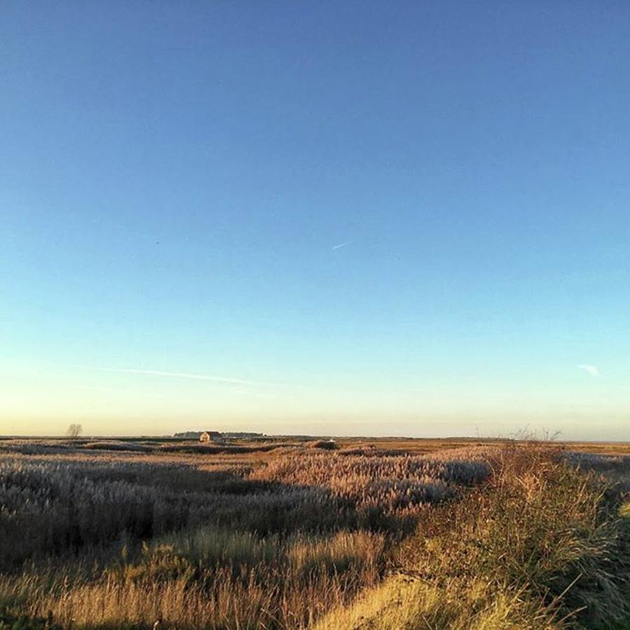 Nature Photograph - Thornham Marsh Lit By The Setting Sun by John Edwards