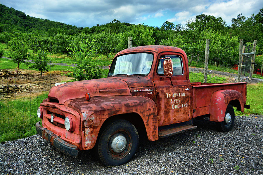 Thornton River Orchard Workhorse