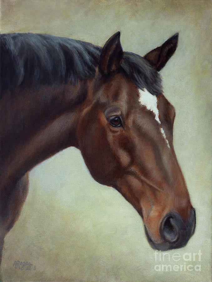 Horse Painting - Thoroughbred Horse, Brown Bay Head Portrait by Amy Reges