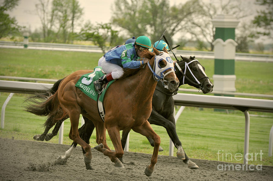 Thoroughbred Photograph - Thoroughbred Racing by Samantha Windham